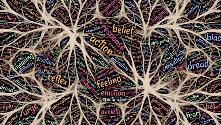 Putting the Bipolar Brain to Bed (or Trying to)
