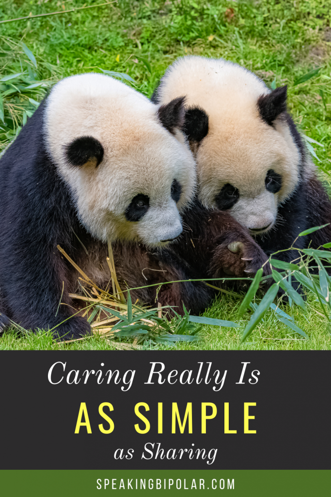 Two pandas huddled together - When you have a chronic and mental illness, you can feel powerless to improve someone's day. This post examines how even the smallest acts matter and make the world a better place.
